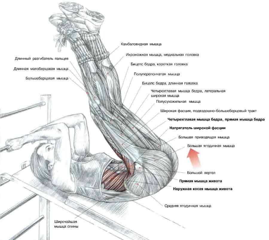Лечения камни предстательной железы